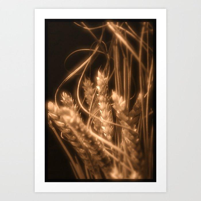 Wheat in sepia Art Print