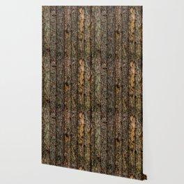 Rough Pine Planks Wallpaper