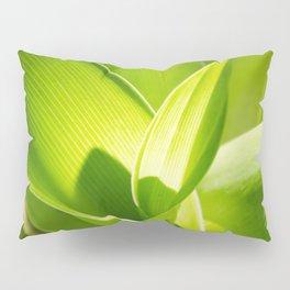 Twirl Pillow Sham