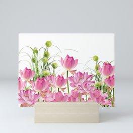 Field of Lotos Flowers Mini Art Print