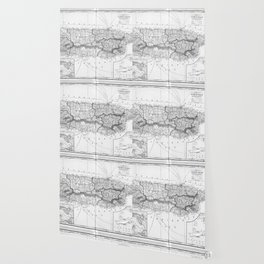 Vintage Map of Puerto Rico (1901) BW Wallpaper