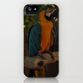 Colors1 iPhone Case