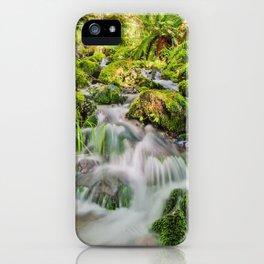 Rainforest Creek iPhone Case