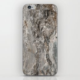 Coast of Maine Rocks, No.3 iPhone Skin
