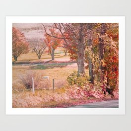 White Horse with Orange and Green Autumn Colors Art Print