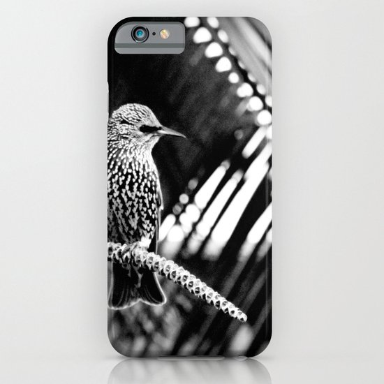 natural patterns iPhone & iPod Case