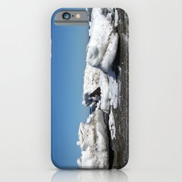 Icebergs and the big Dog iPhone Case