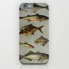 Illustrated Grocers Colorful Saltwater Game Fish Identification Chart iPhone Case