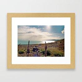 Lake Pukaki (4) Framed Art Print
