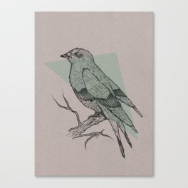 Bird Fascination Canvas Print