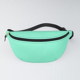 Solid Color Aquamarine Fanny Pack