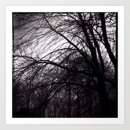 Dark Trees III Art Print