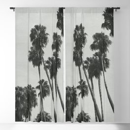 Palm Shadows Blackout Curtain