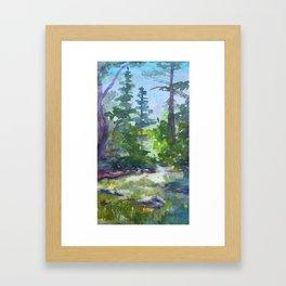 Yosemite Creek Framed Art Print