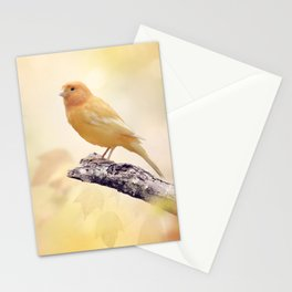 Wild Canary perches on a branch Stationery Cards