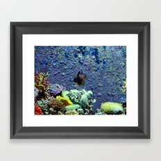 Beautifully Ugly Brown Fish Framed Art Print