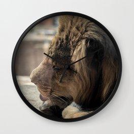 Big Cat Grooming Wall Clock
