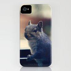 Squirrel  iPhone (4, 4s) Slim Case