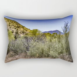 Fresh Green Plants Growing Near Underground Water by the Mountains in the Anza Borrego Desert Rectangular Pillow