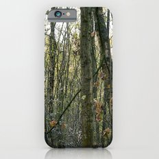 Wood for the trees Slim Case iPhone 6s
