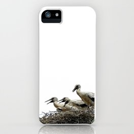 Storks and Fledglings Vector iPhone Case