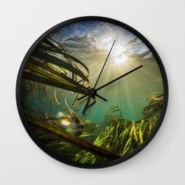 Through the Wild Wall Clock