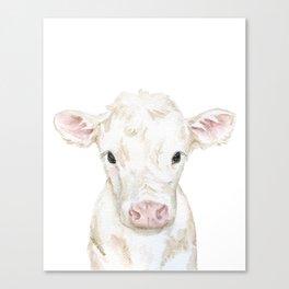 Baby White Cow Calf Watercolor Farm Animal Canvas Print
