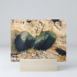 Rock pool Mini Art Print