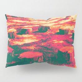 Covenant Pillow Sham