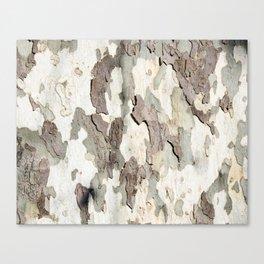 Bark Map Canvas Print