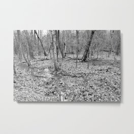 flooded forest, black and white Metal Print
