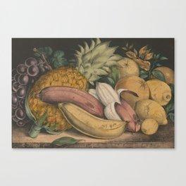 Vintage Illustration of Tropical Fruits (1871) Canvas Print