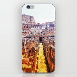The Lions Den iPhone Skin