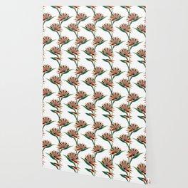 Strelitzia 1 Wallpaper