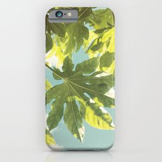 Fig Leaves Slim Case iPhone 6s