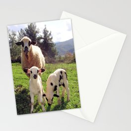 Ewe and Twin Spring Lambs Stationery Cards