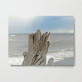 Looking past the Driftwood Metal Print
