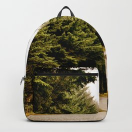 road through the forest Backpack