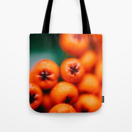 Winter Berries (Macro) in London by Diana Eastman Tote Bag