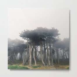 Land's End Metal Print