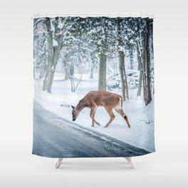 snow deer Shower Curtain