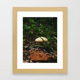 Faerie Home Framed Art Print