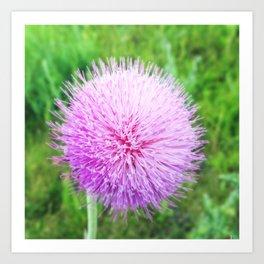 Flower Sphere Art Print