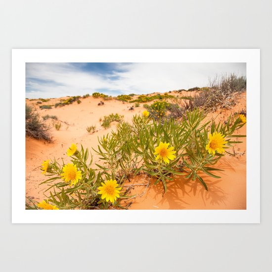 Yellow Flowers in Sand Dunes Art Print