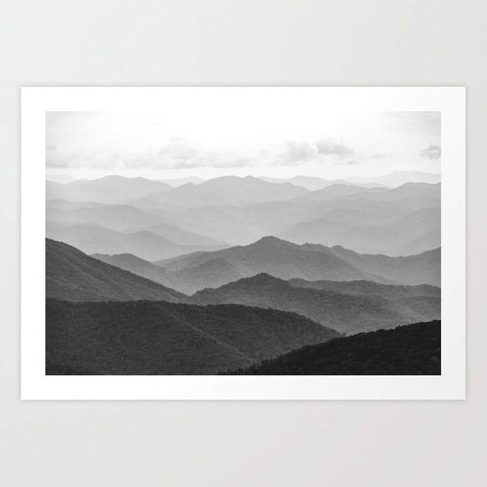 Forest Fade - Black and White Landscape Nature Photography Kunstdrucke