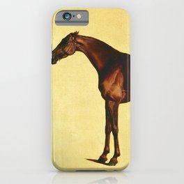 George Stubbs - Pangloss iPhone Case