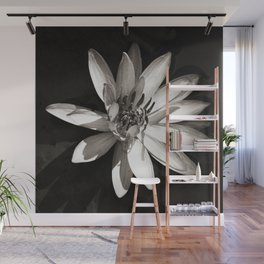 Water Lily Wall Mural