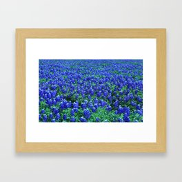 Field of Blue Framed Art Print