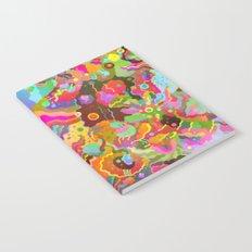 Parascape Notebook