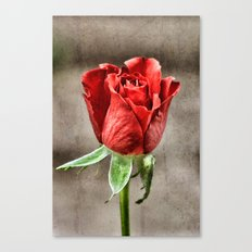 Red Rose Red Canvas Print